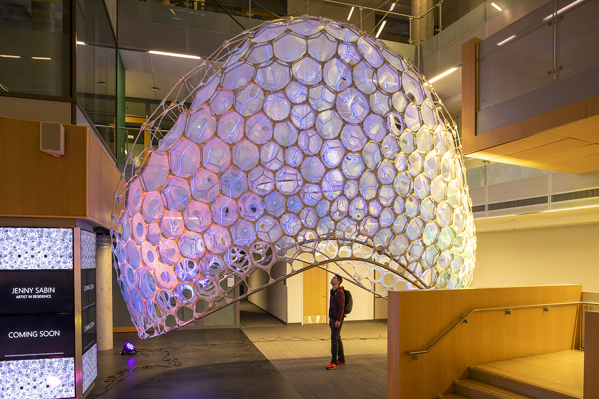 A person stands under an elliptical skeleton of hexagons that are glowing purple, designed by Jenny Sabin